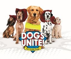 Dogs Unite for guide dogs