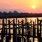 lake pontchartrain crab