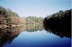 riddle lake | st clair county