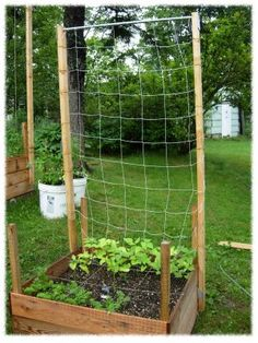 How to trellis vining veggies in the square foot garden