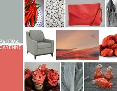 Pantone Spring 2014 Color Forecast - Paloma paired with Cayenne by
