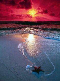#Beach #Sea #Sand #Ocean #Starfish #Sunset #Waves #Wave