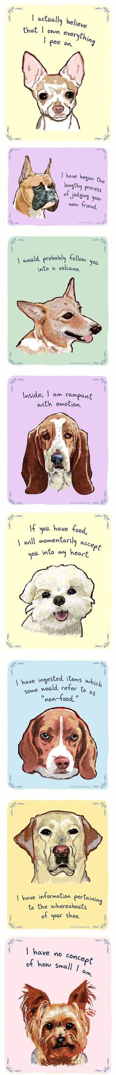 Dog inner monologues.