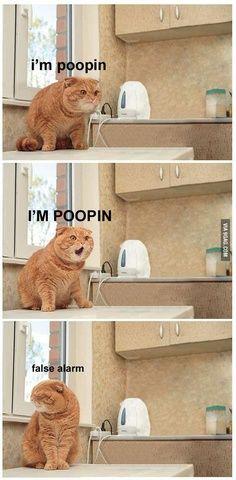 Hhahaha!!!!!