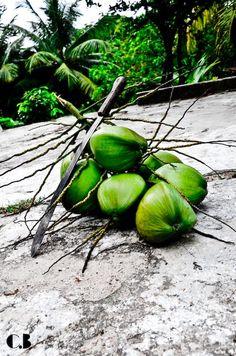 Island Life (Trinidad & Tobago)