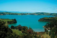 Waiheke Island, New Zealand...currently my most favorite place in the entire world!