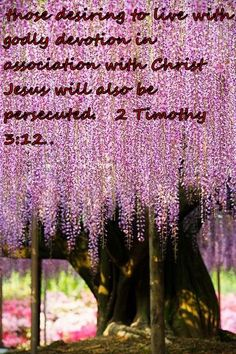 those desiring to live with godly devotion in association with Christ Jesus will also be persecuted.   2 Timothy 3:12