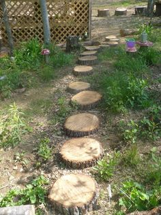 The Enchanted Tree: Natural Play Space.