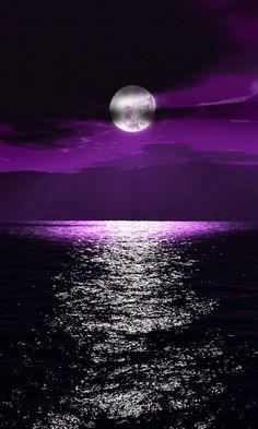 Cool Moonlight