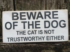 beware of the dog - the cat is not trustworthy either