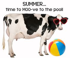 Summer's here...time to moooo-ve to the pool!