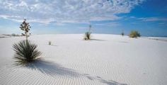 White Sands, New Mexico. Located between Las Cruces & Almagordo, it's miles and miles of white sand in the middle of brown desert