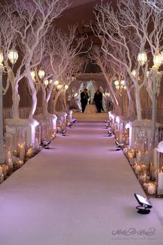 Winter wedding aisle...the key is uplighting on the branches.