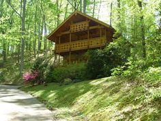 Enchanted Forest - Beautiful Wooded Setting: This awesome 1 bedroom log home is classy in every way! Click here: http://www.cabinfevervacations.com/cabin-detail/?cid=1251