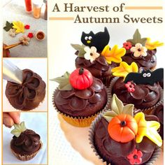 Celebrate Autumn with cupcakes! These chocolate buttercream cupcakes are a perfect Autumn or Halloween treat.