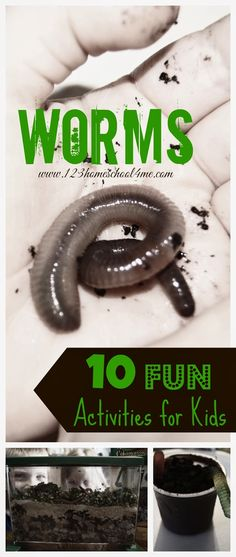10 Fun ways for kid to play and learn with WORMS! #preschool #science
