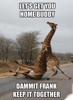 Drunks!