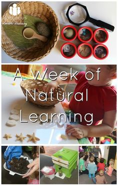 A Week of Natural Learning