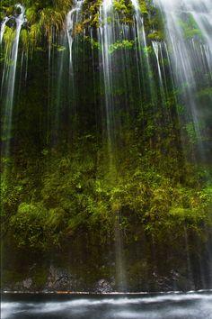 tree waterfall...