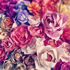 Gorgeous paper flowers