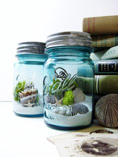 Mason Jar Terrarium: Moss, Seashells, and Lichens - Ball Atlas Blue Glass Jar with Zinc Lid & Beach Scene Wedding Table Decor. $42.00, via Etsy.