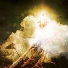 The Transfiguration?