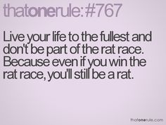 don't be a rat..