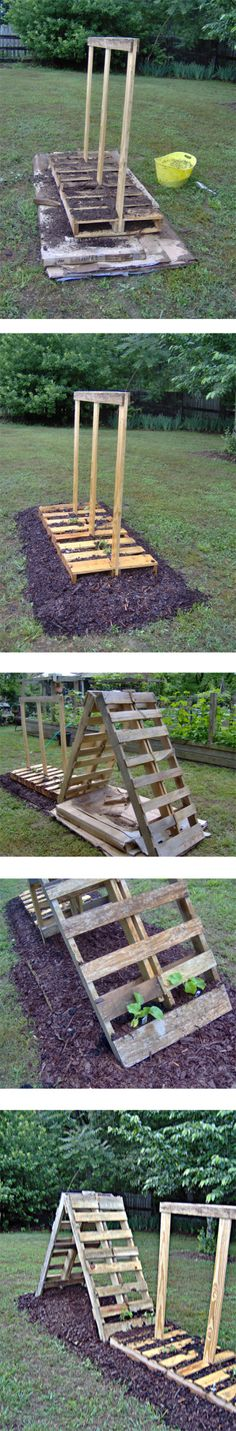 Pallet Garden Project - trellis' for growing