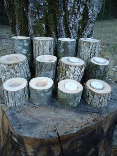 12 Tree Candle Holders for Rustic Weddings Country Decor Cabins Western Limbs |Take a look thought maybe these might go along with the look you were talking about for your cake.