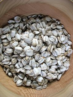 How to Harvest and Roast Your Own Sunflower Seeds