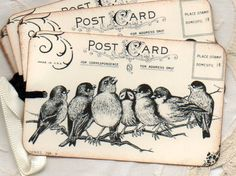 Gift Tags Favor Tags Vintage Birds On A Branch Hang Tags Labels Place Cards Handmade French Shabby Chic