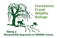 Sponsor an animal with Constance Creek Wildlife Refuge , who take a responsible approach to wildlife issues