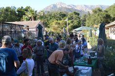 2012 - Annual Fall Plant Sale and Dara Emery Lecture at the Santa Barbara Botanic Garden www.sbbg.org  Santa Barbara Botanic Garden Image Library