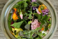 herbal infusions & decoctions