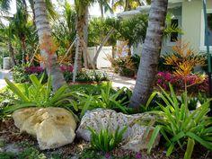 Tropical landscapes on pinterest florida landscaping for Landscaping rocks broward county