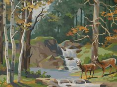 Paint by number deer