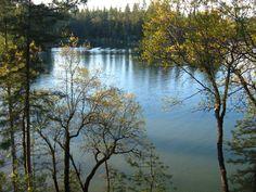 Lake Combie, Meadow Vista, Ca.