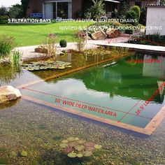 Swimming ponds filtered by plants and other natural ways like gravity and sand or gravel.