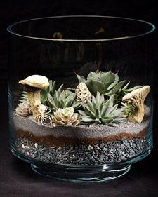 I love terrariums!!!