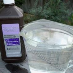 Germinating Seeds - Soak in diluted, 32:1, 3% Hydrogen Peroxide. discourages mold, fungus and damping off.