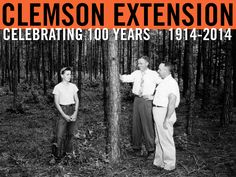 John Faye Berry proudly displays his acre of loblolly pine that he thinned in the 4-H Timber Thinning Contest. He won an engraved wrist watch for the fine job he did. Extension forester W. J. Barker and Assistant County Agent C.B. Season, Jr. discuss his project with him. Image courtesy of Clemson University Special Collections. #ClemsonExt100
