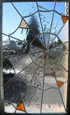 spider web glass window
