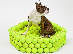 #repurposed dog bed