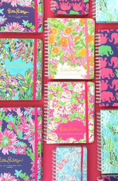 Love these Lilly Pulitzer agendas!  http://rstyle.me/n/jqp8vnyg6