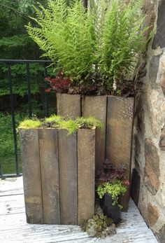 Reclaimed Barnwood Planters, another idea for front hedge