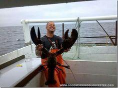cape ann, ma lobster