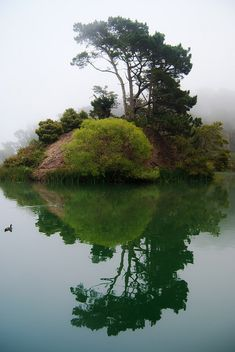 Stow Lake on a foggy day in Golden Gate Park