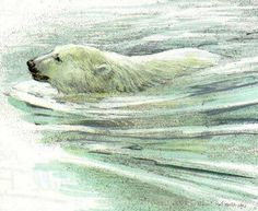 Polar Bear Swimming; Robert Bateman