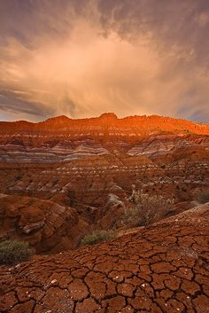Grand Staircase - Escalante National Monument @ http://www.photographybyvarina.com/galleries?album=1=35