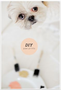DIY Paw Print Wall Art by Sarah Dickerson | Pretty Fluffy